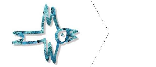 logo_fil_bleu